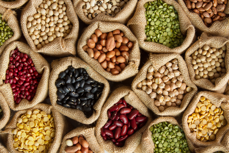 Everything You Need to Know About Plant-Based Protein